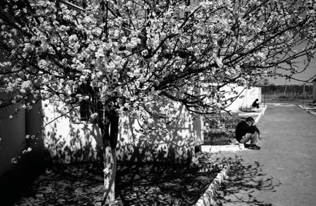"- Image: ""Untitled"" - Ivo Saglietti - Photography"